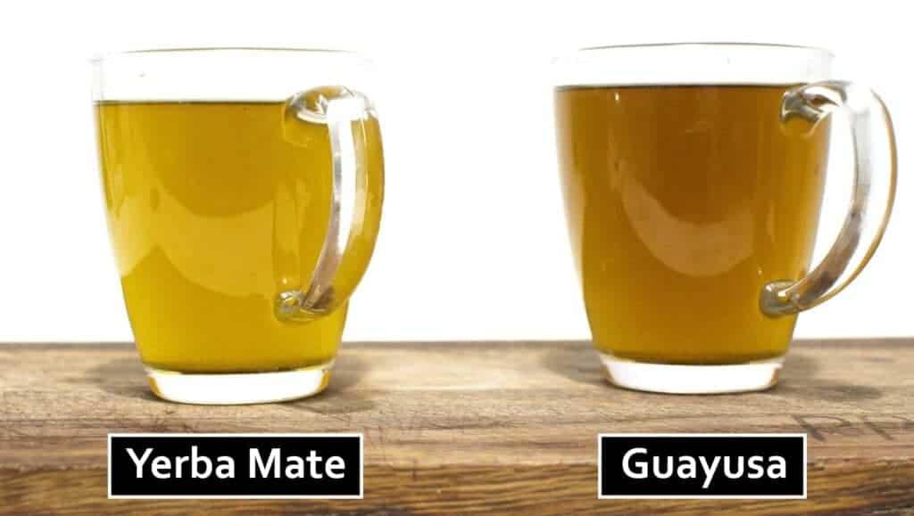 Guayusa vs yerba mate