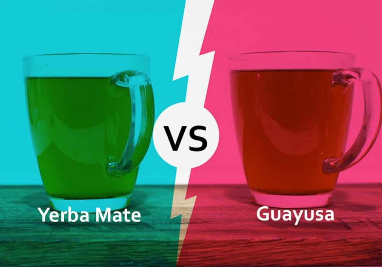 guayusa tea vs yerba mate
