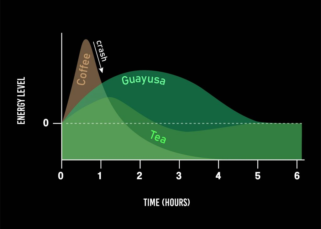 Energy Level comparison; tea, coffee and guayusa